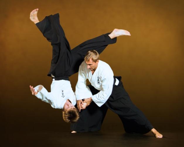 aikido-ntgfa-ivashkin